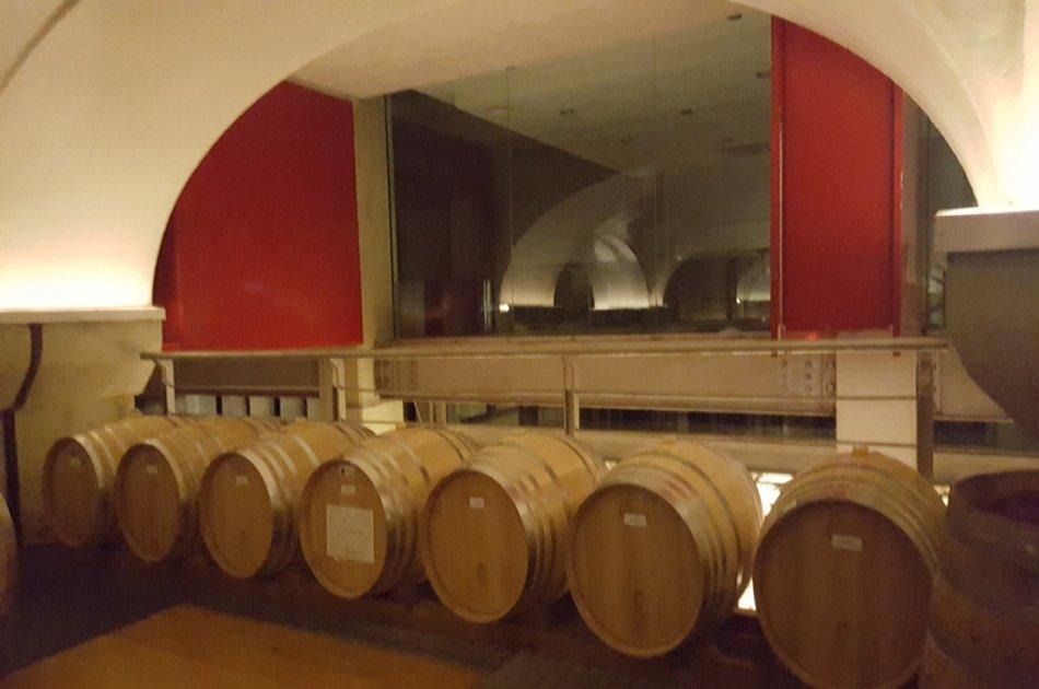 Irpinia DOCG Wine Tour Experience