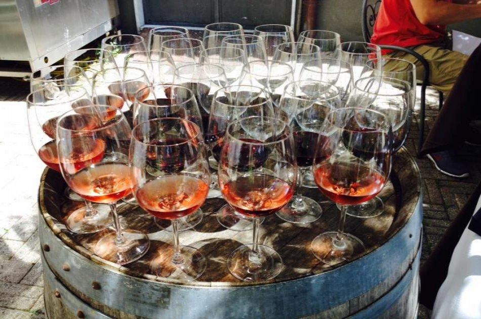 Pompei Archeological site plus Wine Tasting tour