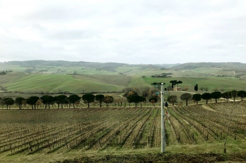 Private Tuscany Wine Tour in a Full Day from Rome