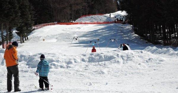 Fujiten Snow Resort and Lake Kawaguchi Day Trip from Tokyo