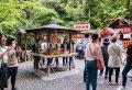 Kyoto's Arashiyama Bamboo Forest & Temple Garden Tour