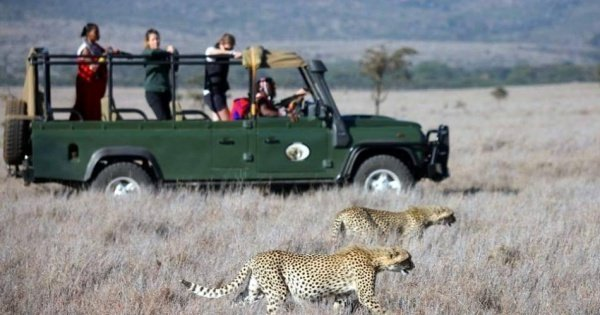 4 Days Enthralling Safaris in Kenya