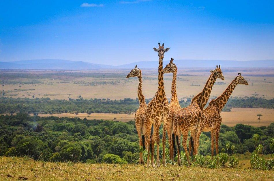 5-Days Masai Mara-Lake Nakuru-Sweetwaters