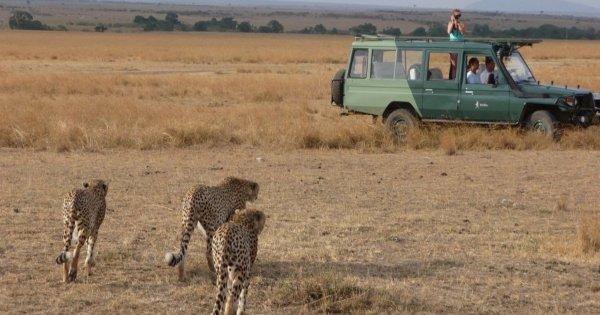 Adventures Explorer Safari in Masai Mara for 5 days 4 nights - Small Group Tour