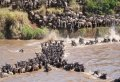Exciting 3 Day Masai Mara Lodge Safari in Kenya