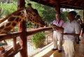 Half Day David Sheldrick Elephant Orphanage, Giraffe Center and Karen Brixen