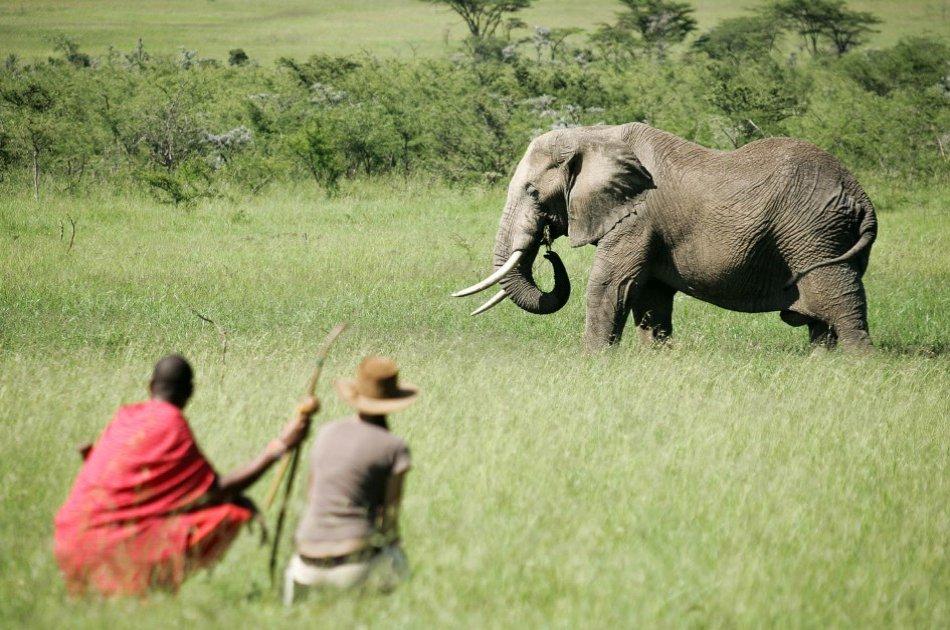 Kenya 3 Days Masai Mara Budget Camping Safari