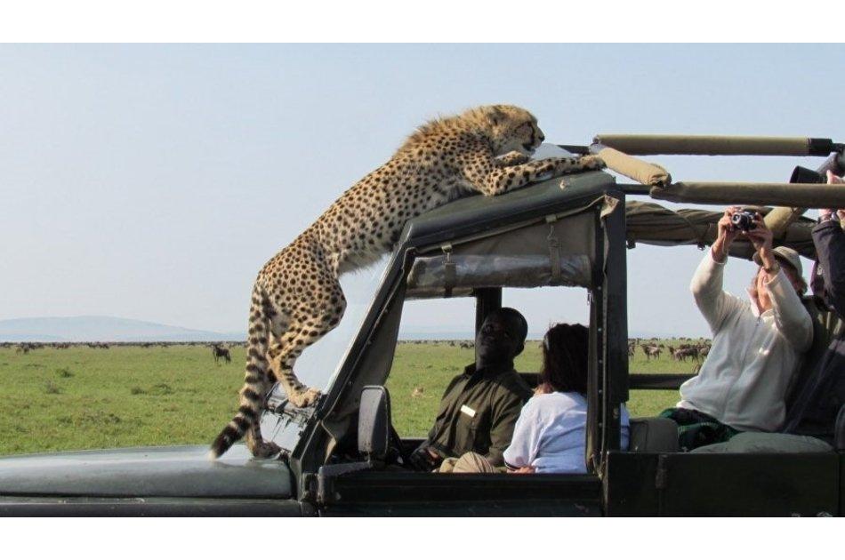 Kenya Wildlife Weekender Tour