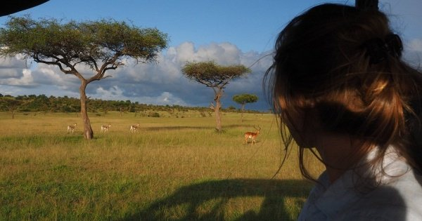 Nairobi National Park & Elephant Orphanage Day Trip