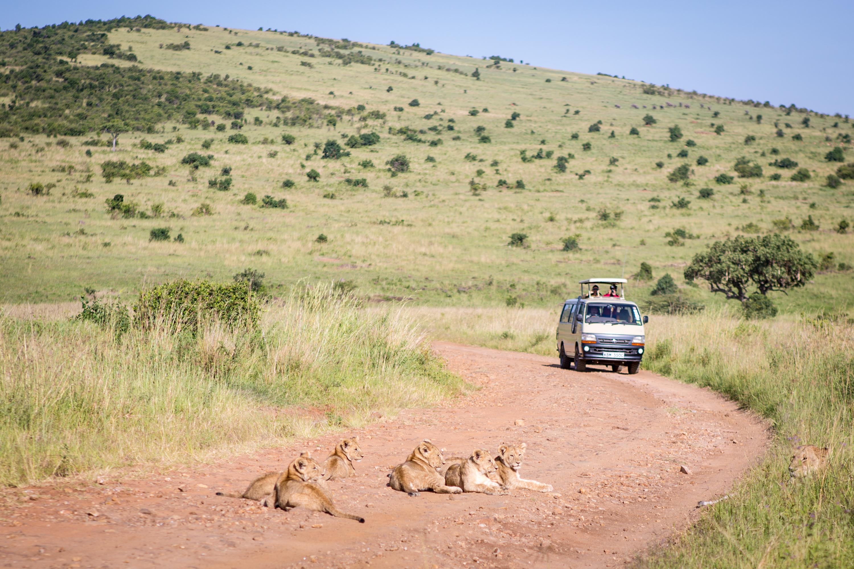 The Great Migration Safari in Kenya