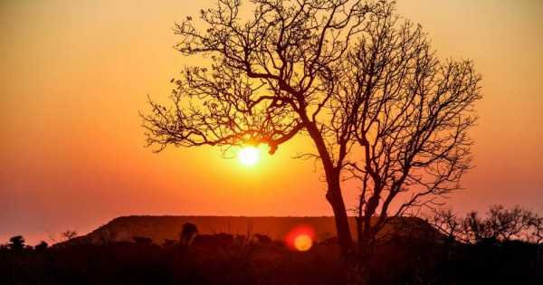 11 Day East Circuit Tour: Culture, Rainforests and Island Escapes Madagascar