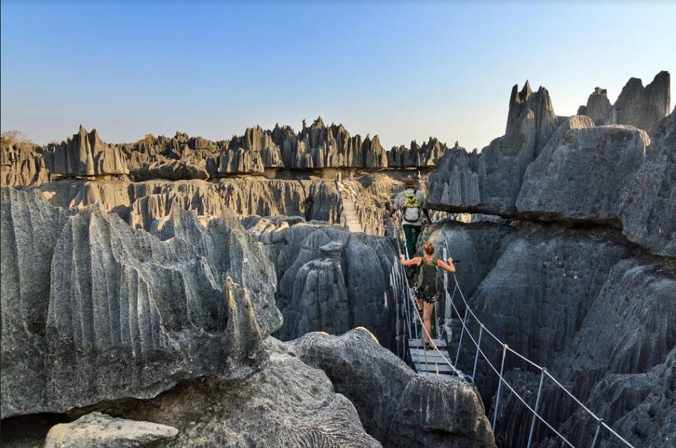 12 Day Madagascar 1000 Vies Tour From South Africa