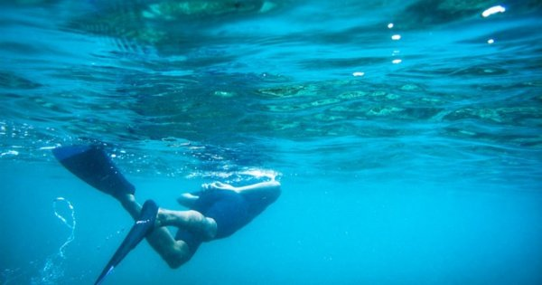 Guided Snorkel Tour of Los Cabos