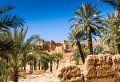 Marrakech 3 Days 2 Nights Desert Group Tour in Morocco