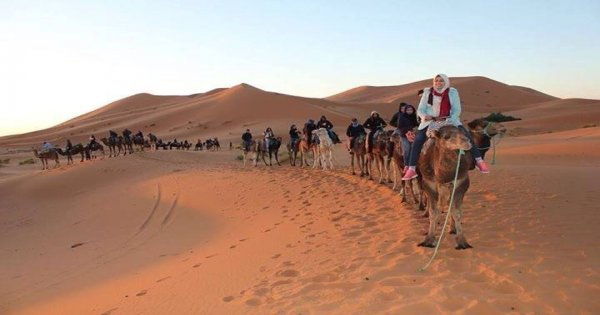 3 Days Tour Marrakech  Draa Valley  Atlas Mountains And Merzouga