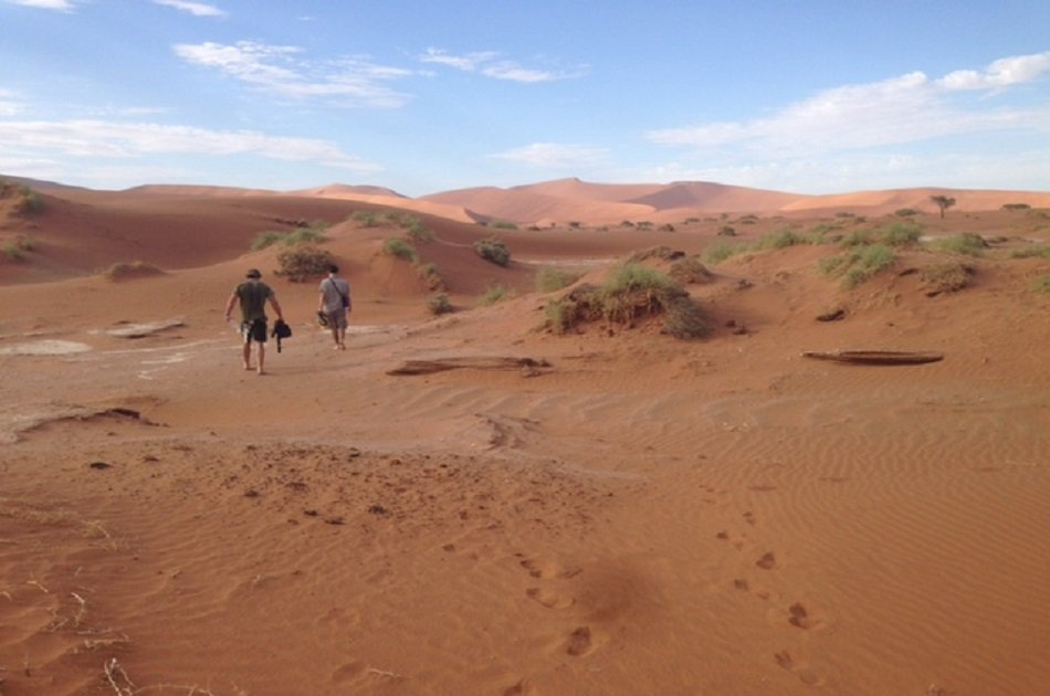 10 Day Namibia Camping Small Group Safari from Johannesburg