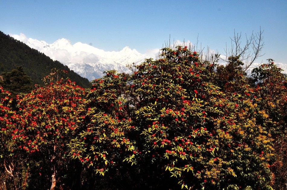 12 Day Annapurna Base Camp Trek