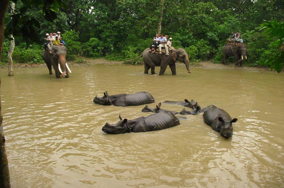 2 Nights 3 Days Chitwan National Park Safari Tour