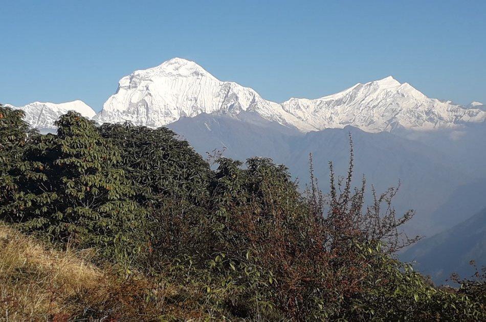 4 Day Ghorepani Poonhill Trek