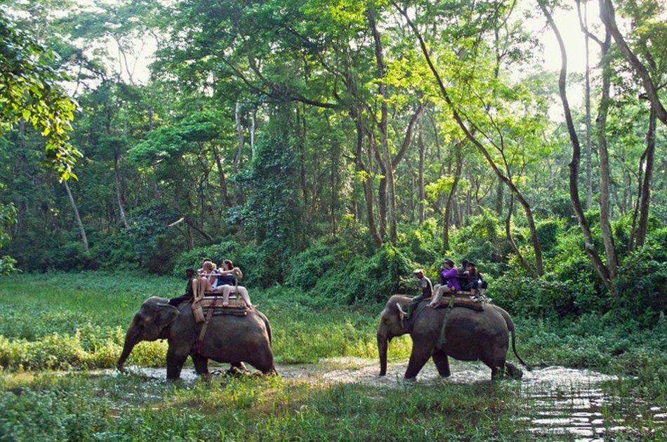 Luxurious Kathmandu, Chitwan and Pokhara tour