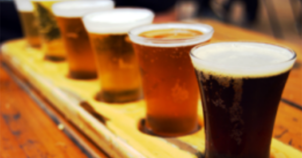 Amsterdam Best Breweries Private Tour