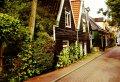 Amsterdam Countryside Private Tour: Edam, Volendam, Marken and Zaanse Schans