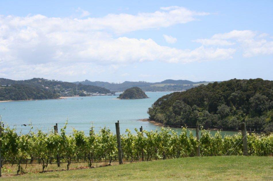 Half Day Bay of Islands Private Tour – Paihia & Kerikeri