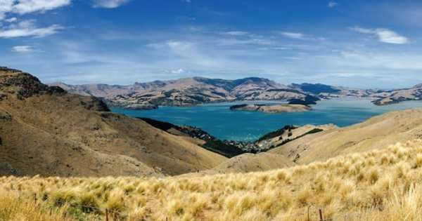 Private Day Tour to Akaroa