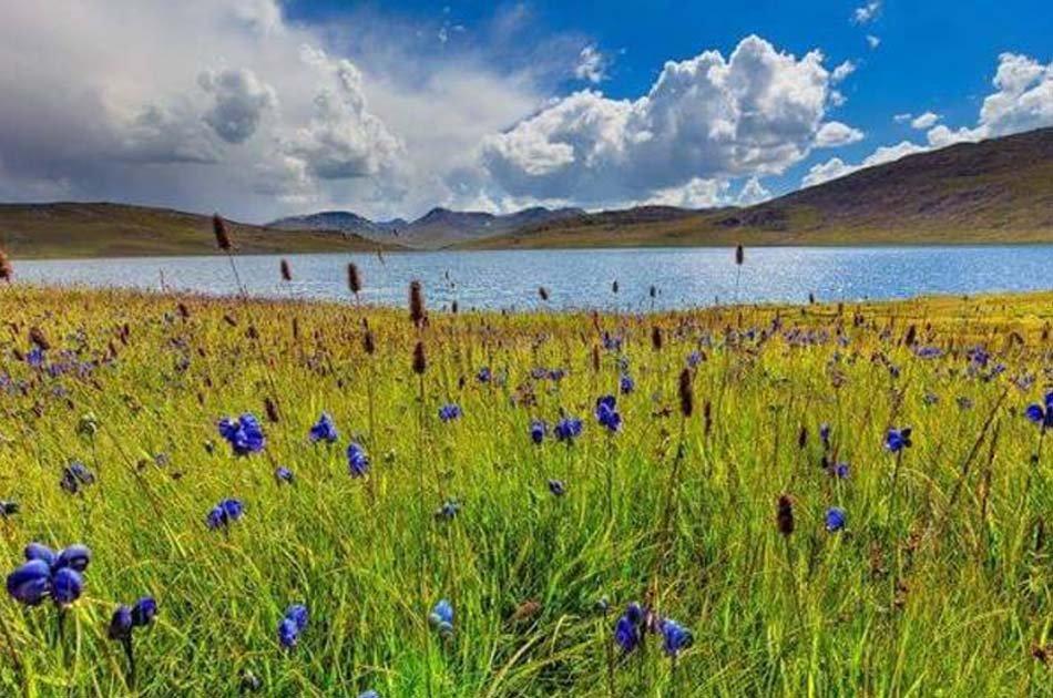 8 Day Tour to Deosai National Park, Fairy Meadows & Rama Meadows