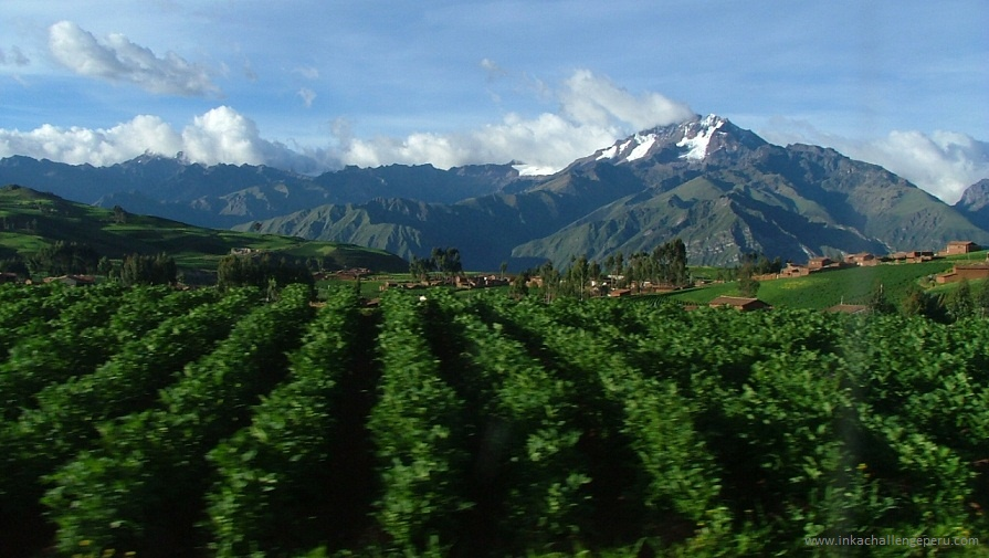 Private Sacred Valley Tour, Cusco Peru