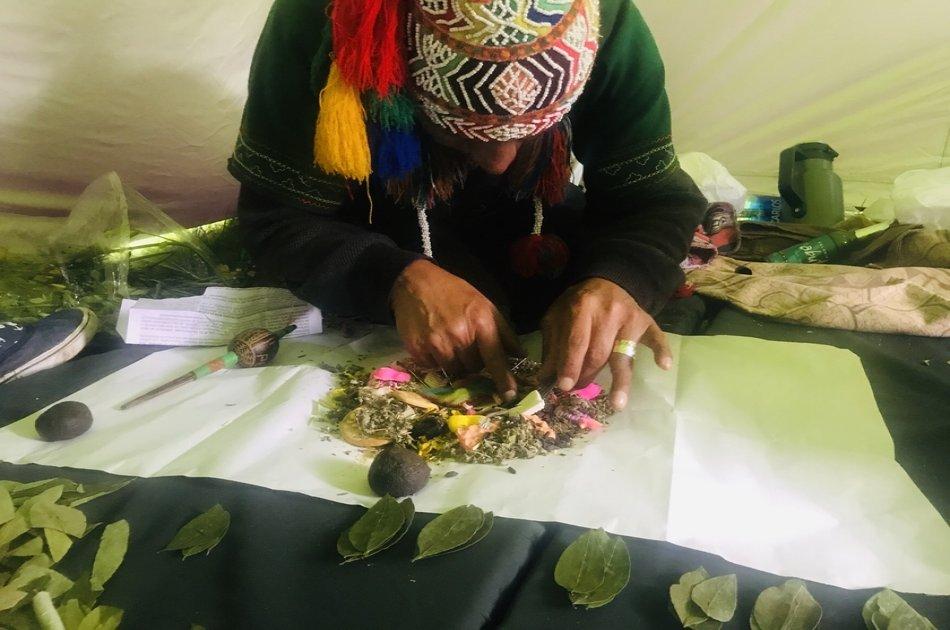 Full Day Andean Plant Teacher Tour
