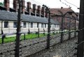 Auschwitz - Birkenau Tour with Hotel Pick Up from Krakow