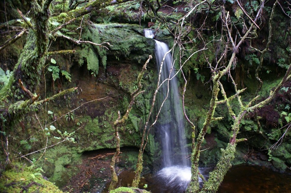 1/2 Day Tour of the Best Terceira Island Has to Offer in the Azores