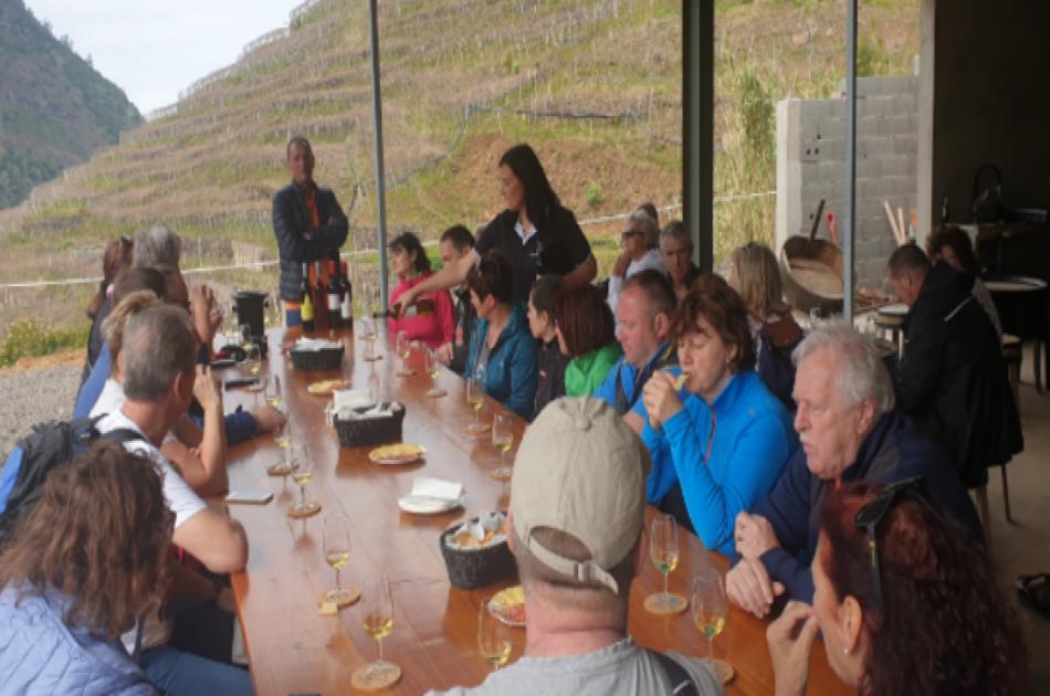 Cabo Girão Skywalk, Wine & Sea Dolphins Watching