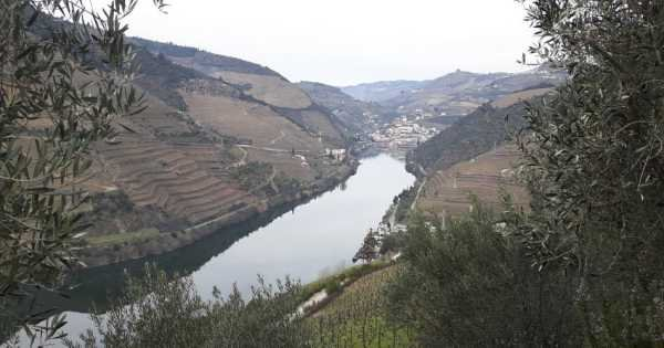 Douro Private Tour From Porto