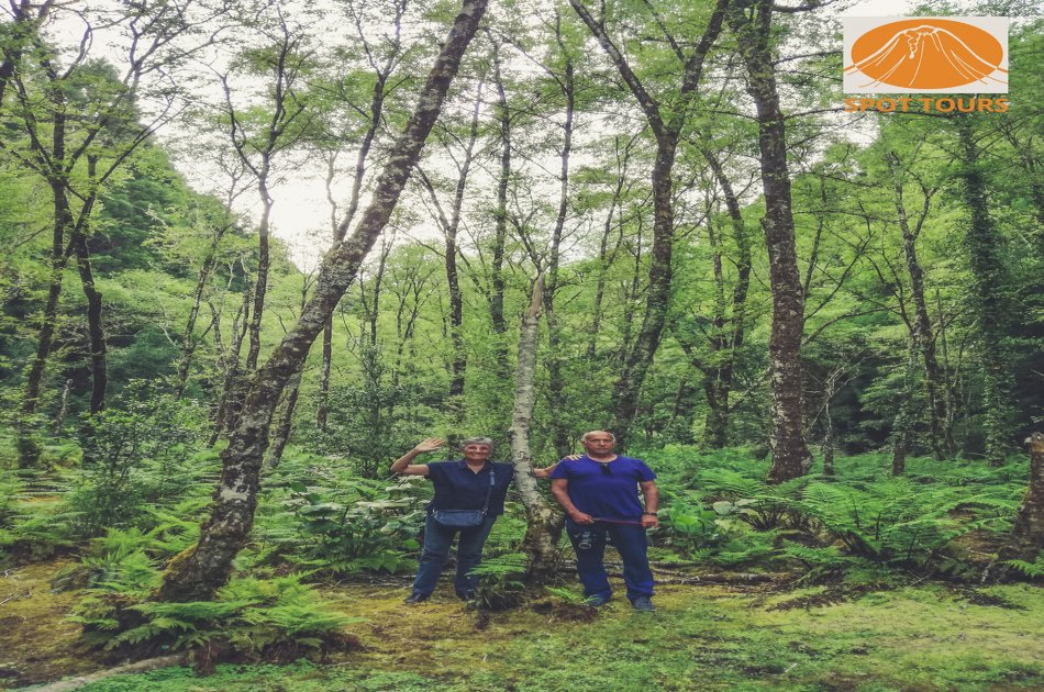 Hand in Hand with Nature Private Half Day Tour