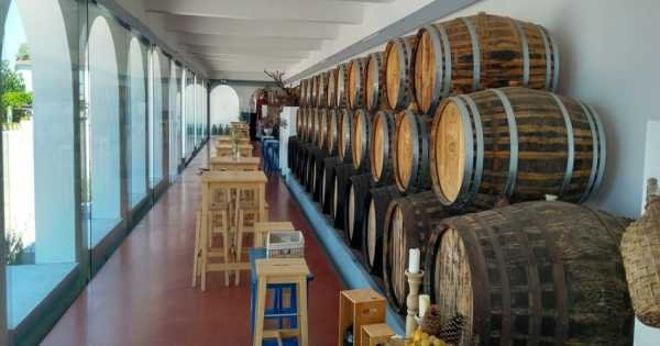 Private Tour, One Day to Visit The Traditional Wineries in Lisbon Region.