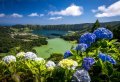 São Miguel island: Private & Customizable tour