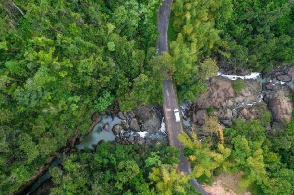 El Yunque Rainforest Experience - Off the beaten path!
