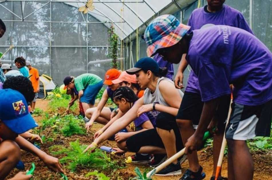 Workshop: Experience Life on a 11 Acre Organic Farm