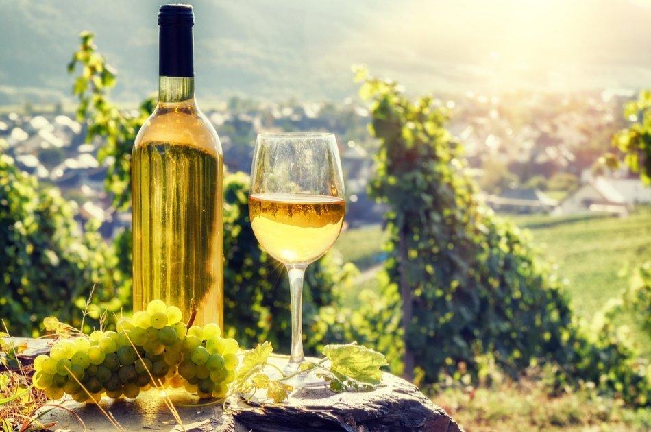 Romanian Wine Tasting in Buzau