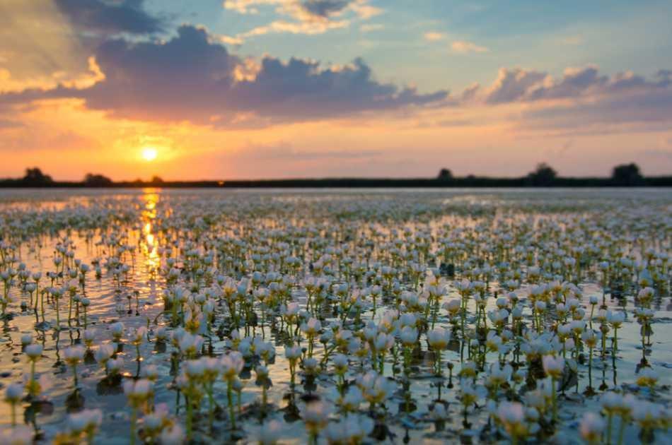 The Danube Delta & Black Sea 2 Day Tour