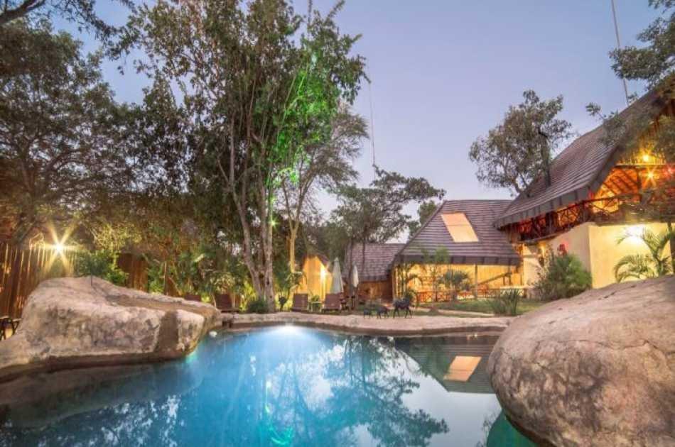 3 Day Luxury Tree House Safari