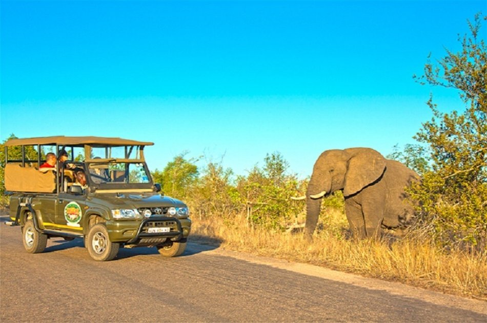 4 Day Private Kruger Classic Safari and Tour