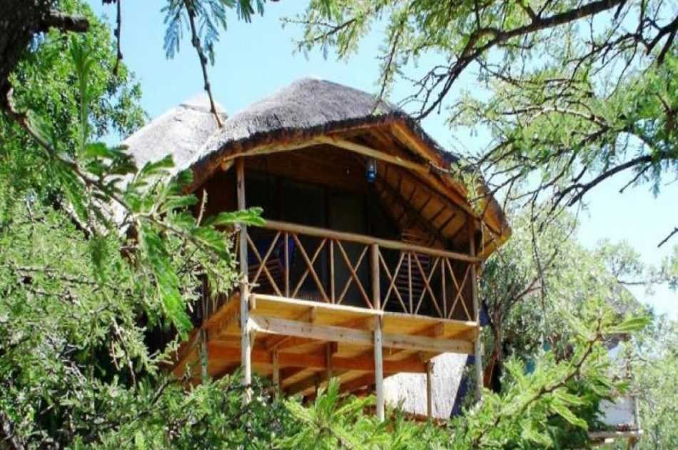6 Day Kruger Park Tree House Safari