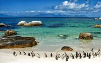 Best of the Cape Town Tour