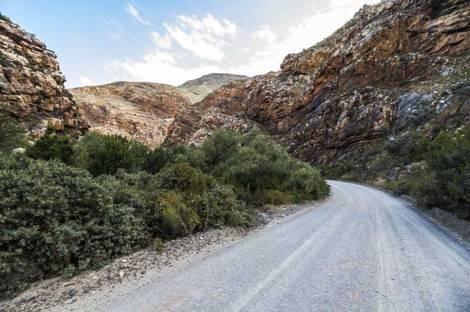 Full day tour to Aquila Private Game Reserve