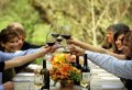 Private Luxury  Wine Tour Cape Town