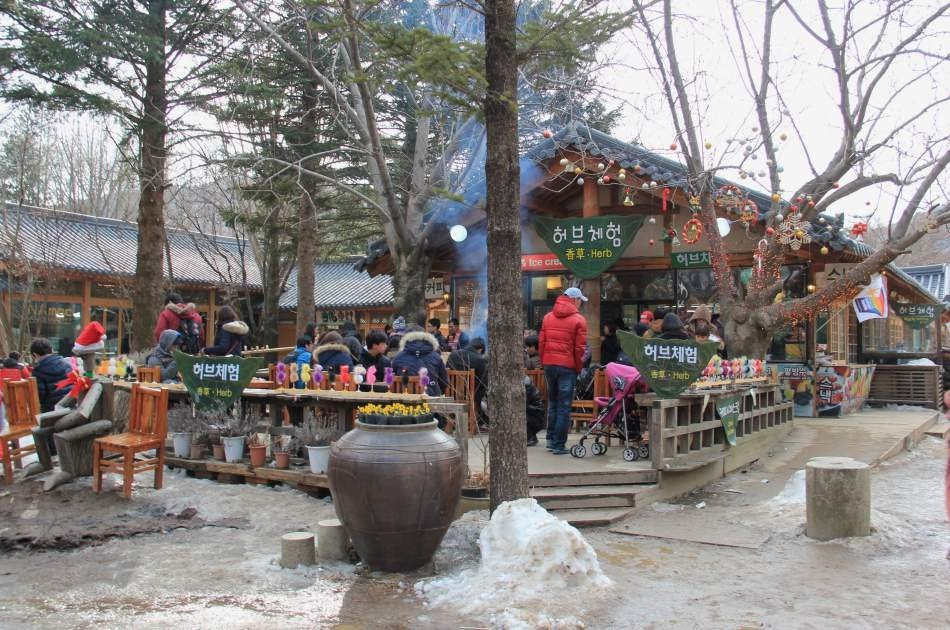 Magnificent Private Tours in South Korea ! Nami Island & Petit France