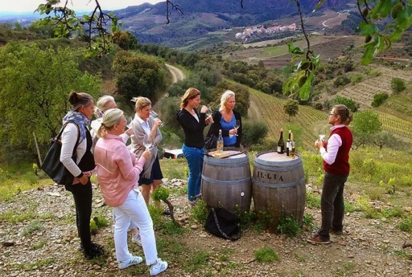 Private Wine Tour to Priorat From Barcelona